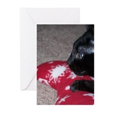 Unique Black cat, halloween Greeting Cards (Pk of 20)