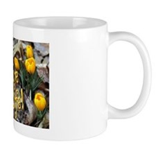 Yellow Crocus Mug - Celebrate Life