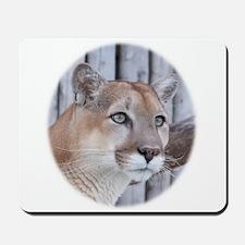 Glancing Cougar Mousepad