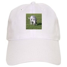The Rusk's Store Baseball Cap