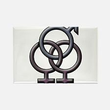 SWINGERS SYMBOL FMF GRAY Rectangle Magnet