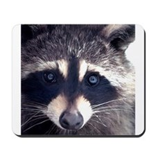 The Raccoon Mousepad