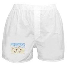 Sandpipers on Old Orchard Bea Boxer Shorts