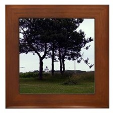 Spring Point Light Framed Tile