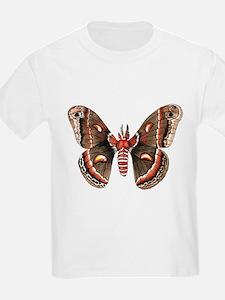 Cecropia Moth T-Shirt