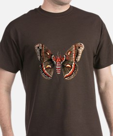 Cecropia Moth T-Shirt