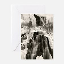 Unique Trail photo Greeting Cards (Pk of 20)