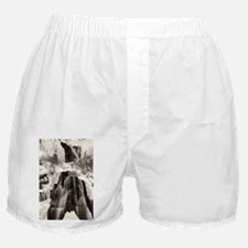 Funny Wilderness Boxer Shorts