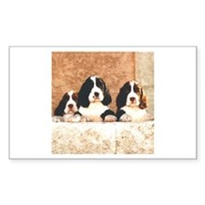 English Springer Pups 2 Rectangle Decal