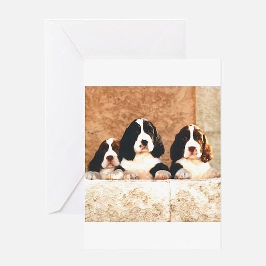English Springer Pups 2 Greeting Card
