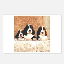 English Springer Pups 2 Postcards (Package of 8)