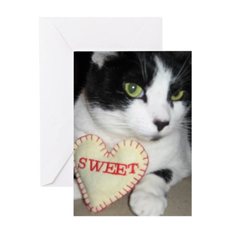 Loving Kitty Greeting Card