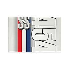454 SS RWB Rectangle Magnet (100 pack)