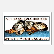 catahoula hog dog Postcards (Package of 8)