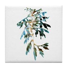 Leafy Sea Dragon Tile Coaster