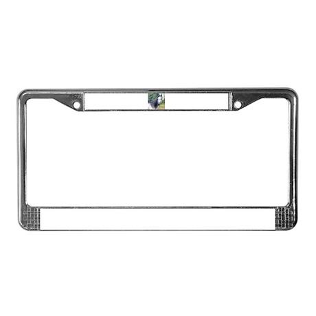 Grey Arabian Mare License Plate Frame