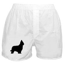 Briard Boxer Shorts