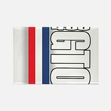 GTO RWB Rectangle Magnet