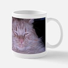 Orange Tabby Sour Puss Mug