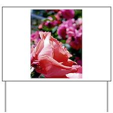 Rose V Yard Sign