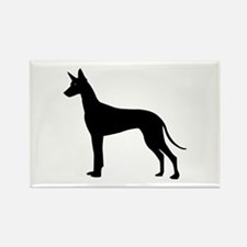 Pharaoh Hound Rectangle Magnet