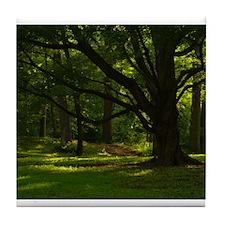 """""""A Midsummer's Meander"""" Tile Coaster"""