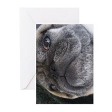 Gift Pug Life Greeting Card (Pk of 10)