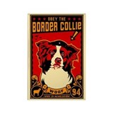 Border collie magnets Magnets