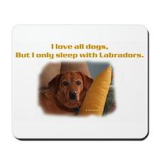Fox Red Labrador Mousepad