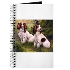 Field Springer Spaniels Journal