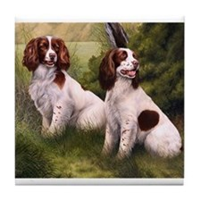 Field Springer Spaniels Tile Coaster