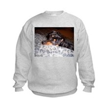 Min Pin Sweatshirt