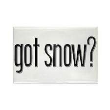 Got Snow? Rectangle Magnet (100 pack)