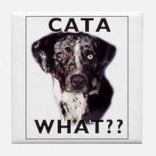 cata WHAT? Tile Coaster