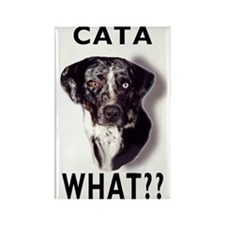 cata WHAT? Rectangle Magnet