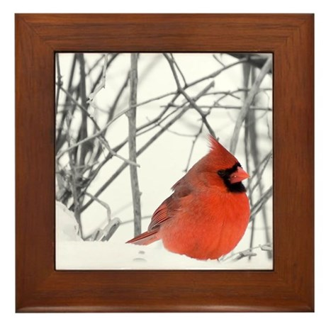Red Cardinal Framed Tile