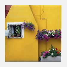 Italy Tile Coaster: <br> Burano wall