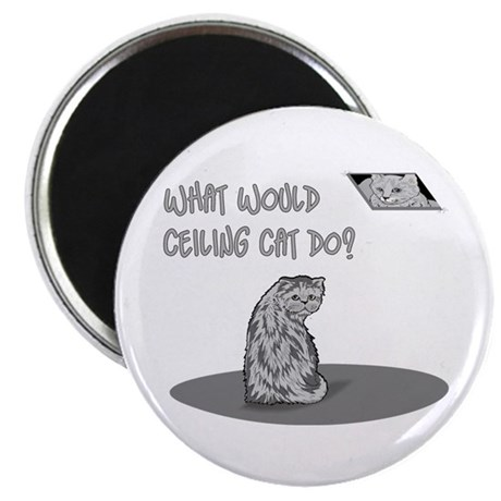 """What Would Ceiling Cat Do? 2.25"""" Magnet (10 pack)"""