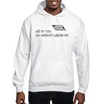 Scott Designs Ceiling Cat Hooded Sweatshirt