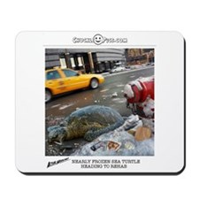 Frozen Sea Turtle Mousepad