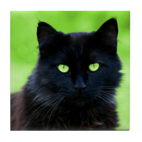 Beautiful Black Cat Tile Coaster