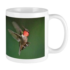 Male Hummingbird Flying Mug