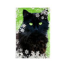 Black Cat & Snowflakes Rectangle Magnet