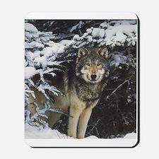 """Wolf Stare"" Mousepad"