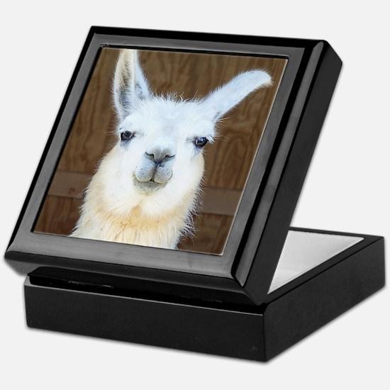 Cute Llama Keepsake Box