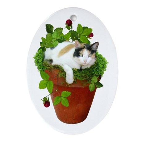 Flowerpot Cat Oval Ornament