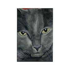 Russian Blue Cat Rectangle Magnet