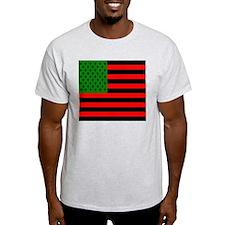 3-usafricacq7 T-Shirt