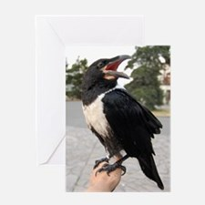 Unique Crows Greeting Card