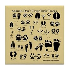 Animal Tracks Pawprints Tile Coaster